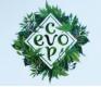 EvoCup