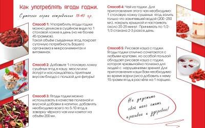 Godzhi-listovka2
