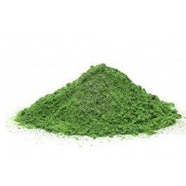 organicwheatgrass2